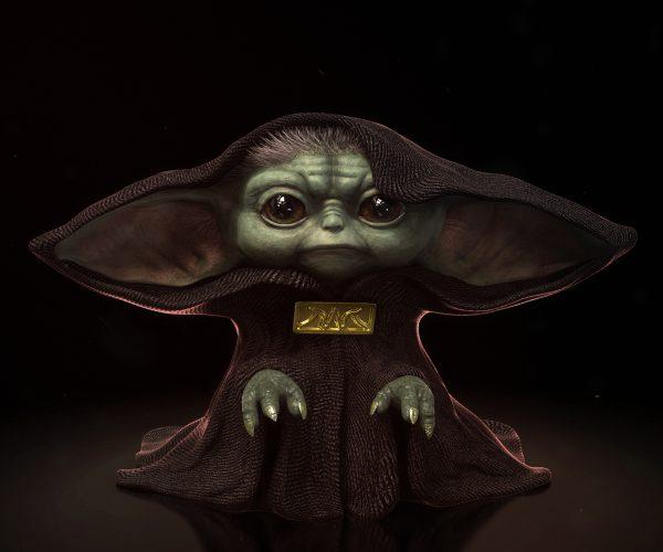 The Senate I am